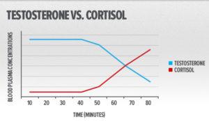 kortyzol a trening